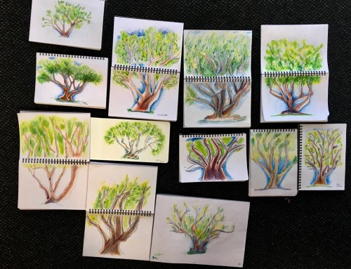 New Sketchers Class Tuesday 18th, Thursday 20th, Friday 21st and Saturday 22nd February 2020