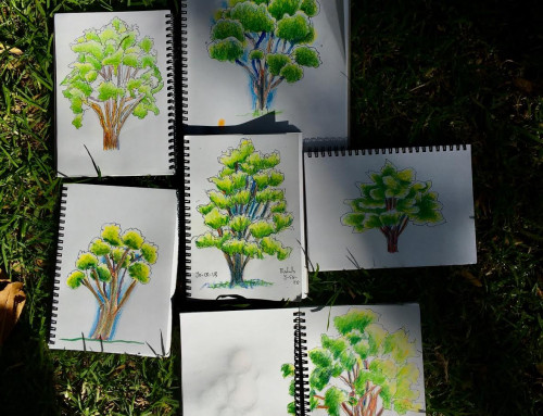 week 2 – first trees