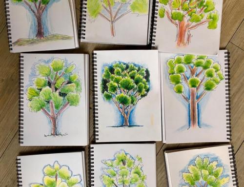 week 2: New sketchers: exploring 'depth of field,' plus first trees